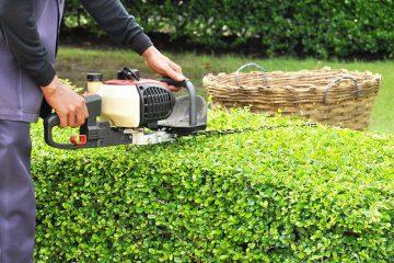 l'entretien de vos espaces verts
